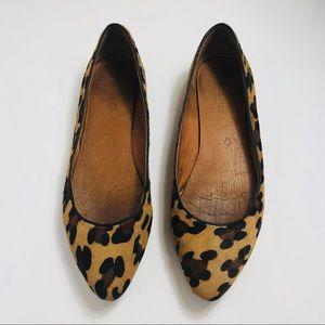 Madewell calf hair pointy toe leopard flat